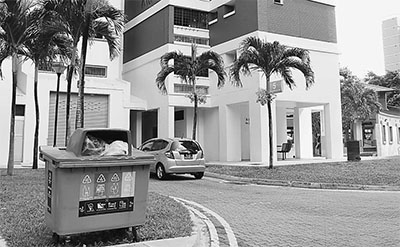 新加坡:严格执法,没人敢乱扔垃圾