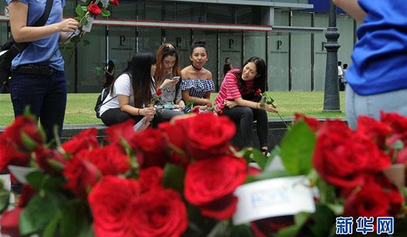 新加坡:情人節鮮花俏(高清組圖)