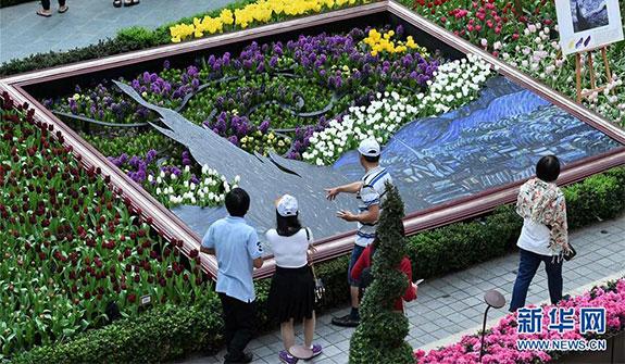 新加坡濱海灣花園花盛開