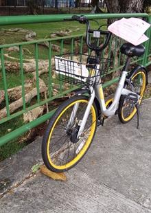 新加坡如何治理共享單車亂停放?